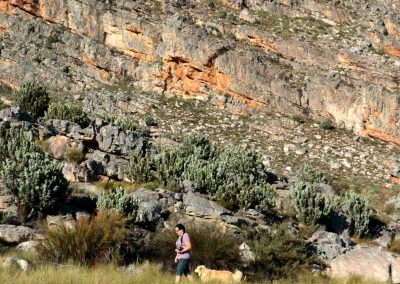 matroosberg-50-shades-of-green-02