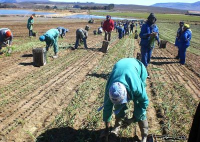 matroosberg-activity-farm-tours-11