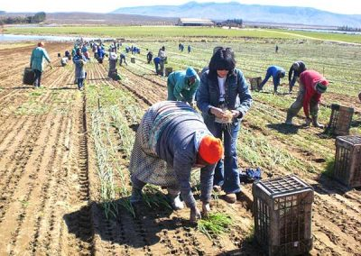matroosberg-activity-farm-tours-13
