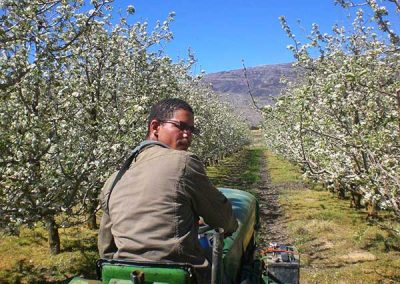 matroosberg-activity-farm-tours-16