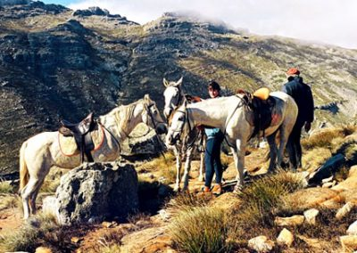 matroosberg-activity-horse-riding-02