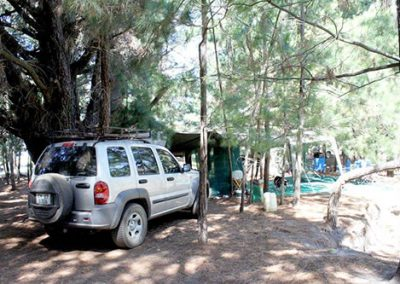 matroosberg-accommodation-dennebos-camp-03
