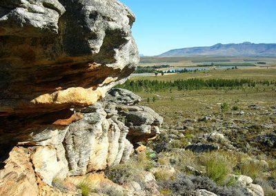 matroosberg-nature-scenic-16