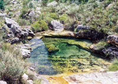 matroosberg-nature-scenic-28