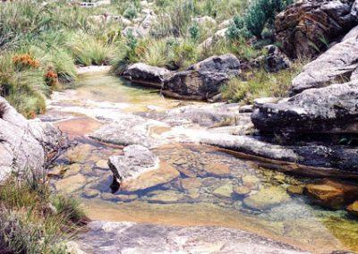 matroosberg-nature-scenic-30